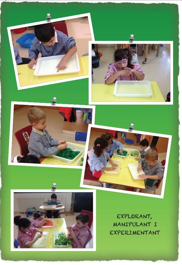 experimentant II