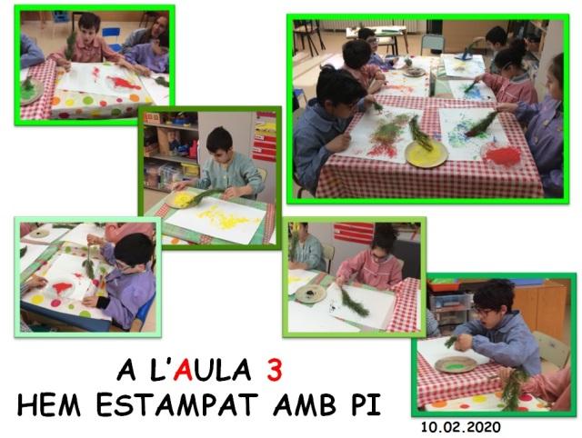 plastica a3